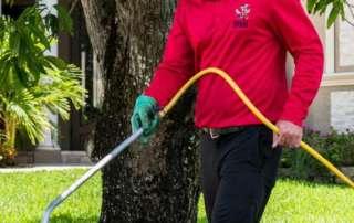 شركة رش مبيدات بجدة , افضل شركة مكافحة حشرات بجدة , شركات رش الحشرات بجدة , مكافحة النمل الابيض بجدة
